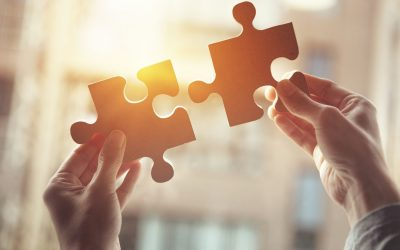 The Fund Jigsaw Puzzle
